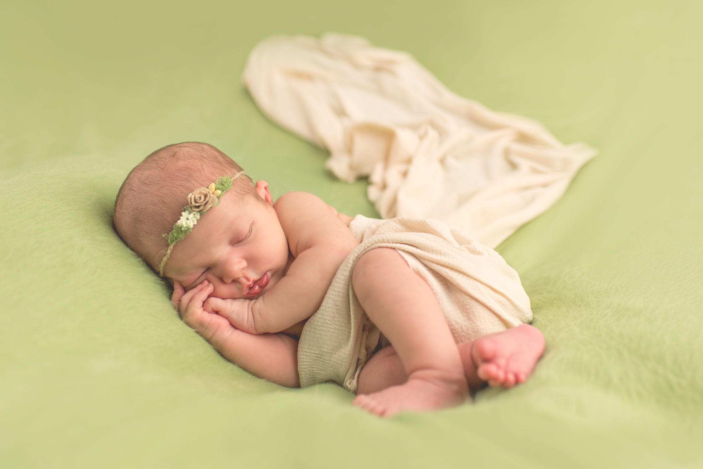 michigan newborn photographer macomb county