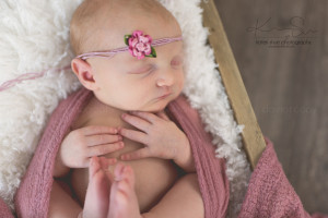 newborn michigan mount clemens maternity photographer detroit photography