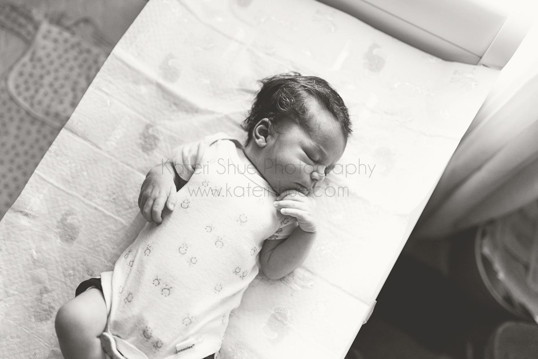 michigan mount clemens maternity pregnancy family newborn detroit macomb county photography mi photographer mt lifestyle