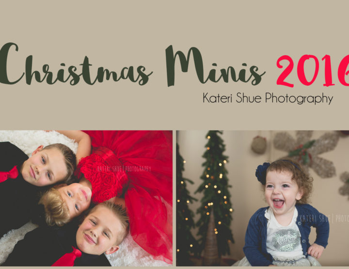 Christmas Mini Sessions 2016