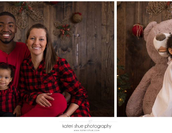 Special Edition Christmas Mini Sessions 2017 - Macomb County Photographer